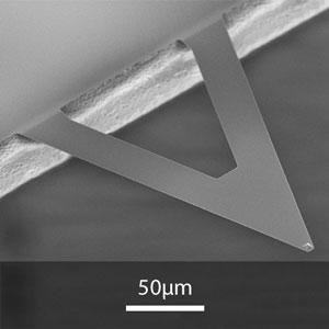 AFM探针MikroMasch锥体氮化硅探针XNC12/Cr-Au    10根/盒
