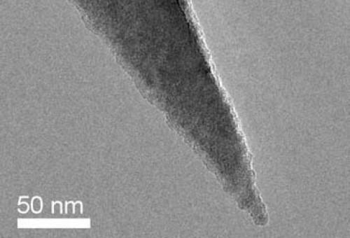AFM探针Nanosensors 导电探针PPP-EFM  10根/盒