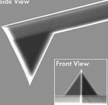 AFM探针NanoWorld ARROW-NCR,轻敲可视化针尖探针