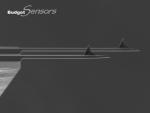 AFM探针BudgetSensors多参数镀金刚石针尖矩形悬臂探针All-In-One-DD 5根/盒